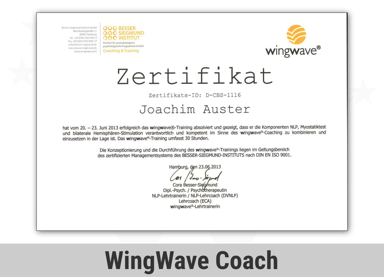 Zert Psykom Jba Wingwave Coach